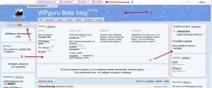 структура блога на Я.ру